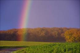 ©Ein Regenbogen nur für mich!_46