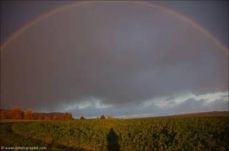 ©Ein Regenbogen nur für mich!_48