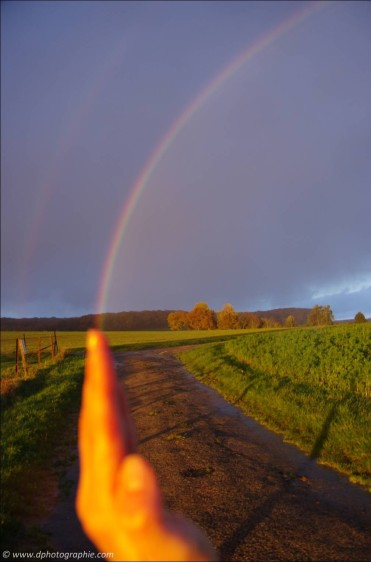 ©Ein Regenbogen nur für mich!_49