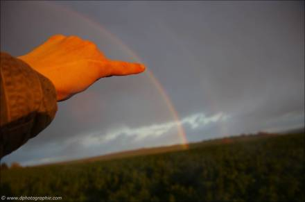 ©Ein Regenbogen nur für mich!_52