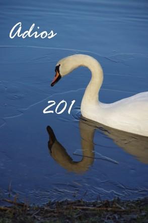 2013-12-31 Weisse Schönheit_16a