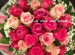 ©La vie en rose