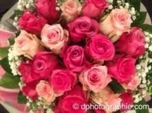 20140307-125659.jpg
