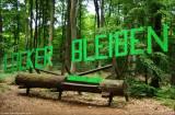©Locker bleiben
