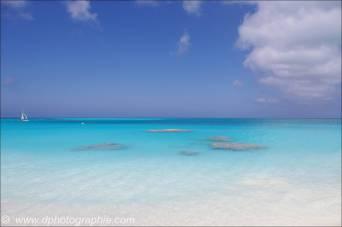 ©10_03 Columbus Isle - Bahamas_0170
